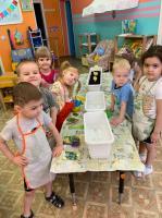 Вот так активно и творчески ребята-любознатики реализуют проект «Огород на окне» С самого рождения ребенок является первооткрывателем, исследователем того мира, который его окружает. Ребята приняли на себя роль настоящих садоводов. Они научились выса